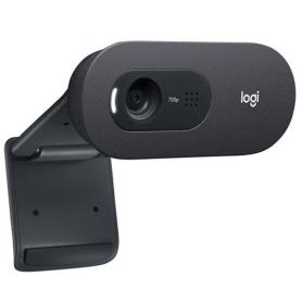 Webcam Logitech C505e HD Business (Noir)