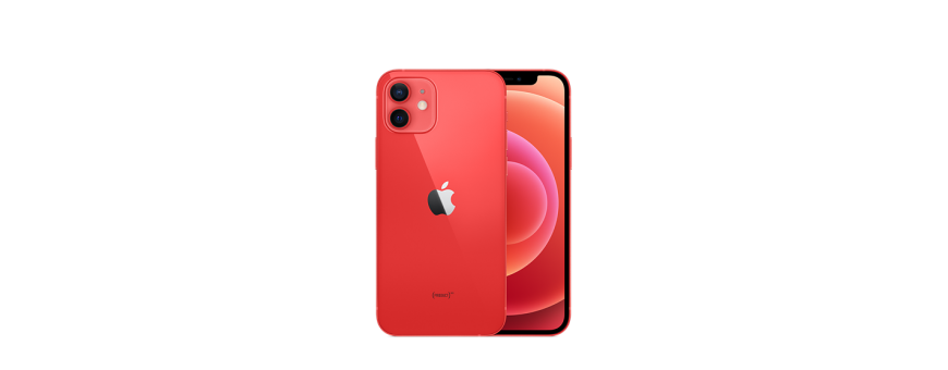 iPhone 12 6,1'